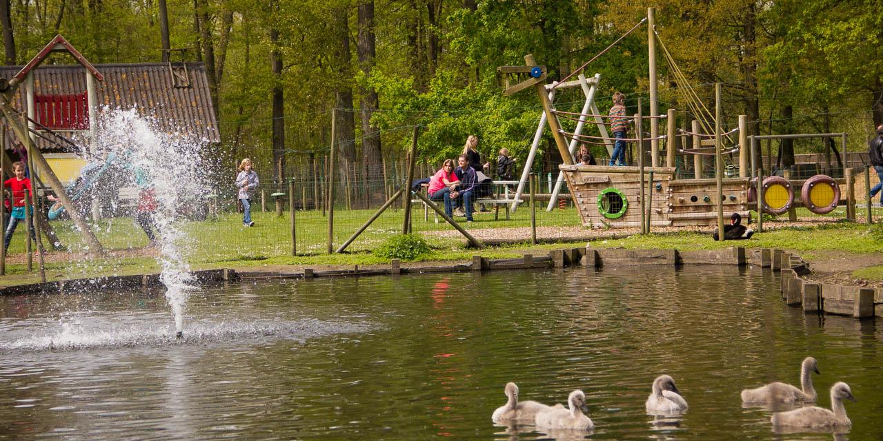 Eendjes zwemmen rustig in het vijvertje waar de fontein uiteen waait door de bries. Enkele ouders zitten op een bankje in de speeltuin op de achtergrond, te kijken hoe hun kroost speelt op de piratenboot en de schommel.